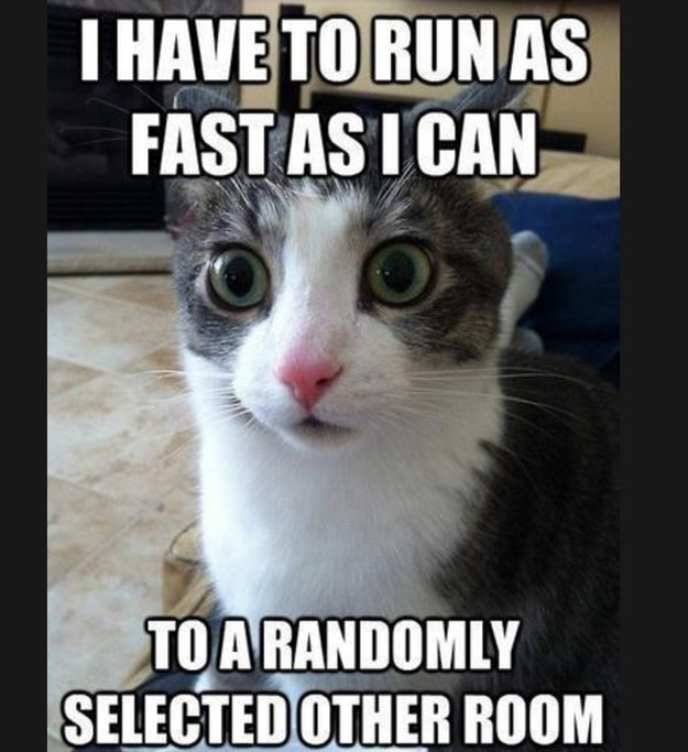 i have to run as fast as i can to a randomly selected other room, meme