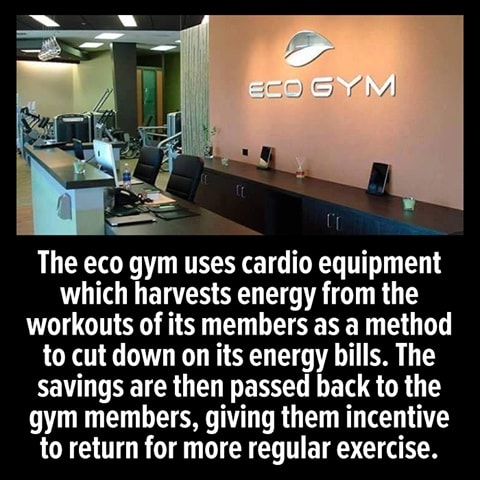 the eco gym uses cardio equipment which harvests energy from the workouts of its members as a method to cut down on its energy bills, the savings are then passed back to the gym members, giving them incentive to return for more