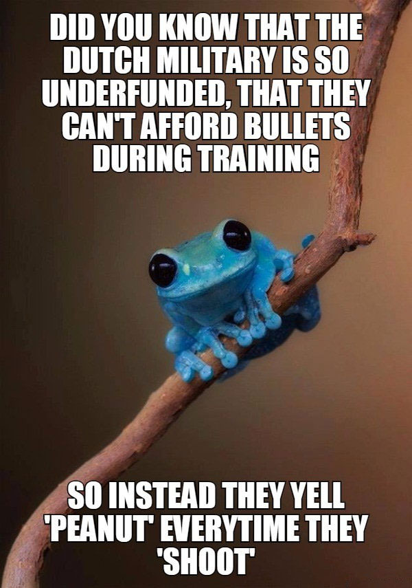did you know that the dutch military is so underfunded that they can't afford bullets during training, so instead they yell peanut every time they shoot, small fact frog, meme