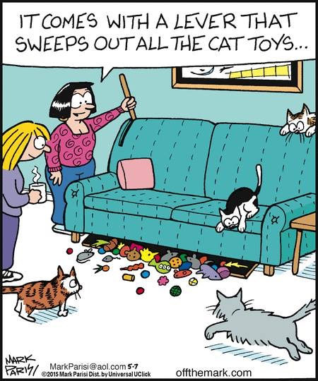 it comes with a lever that sweeps out all the cat toys, a couch for cats