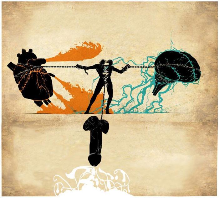 the daily struggle of heart versus brain versus dick
