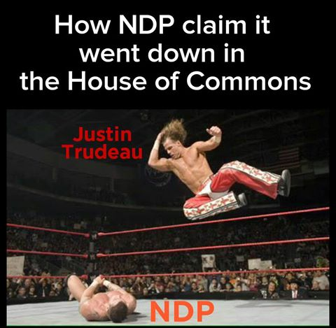 how ndp claims it went down in the house of commons, justin trudeau accidentally elbows an opposition mp, wrestling