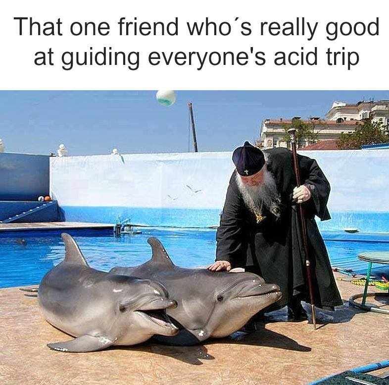 that one friend who's really good at guiding everyone's acid trip