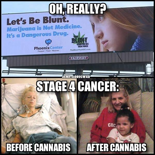 let's be blunt, marijuana is not medicine, it's a dangerous drug, oh really? stage 4 cancer, before cannabis, after cannabis