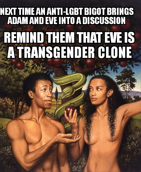 next time an anti-lgbt bigot brings adam and eve into a discussion, remind them that eve is a transgender clone