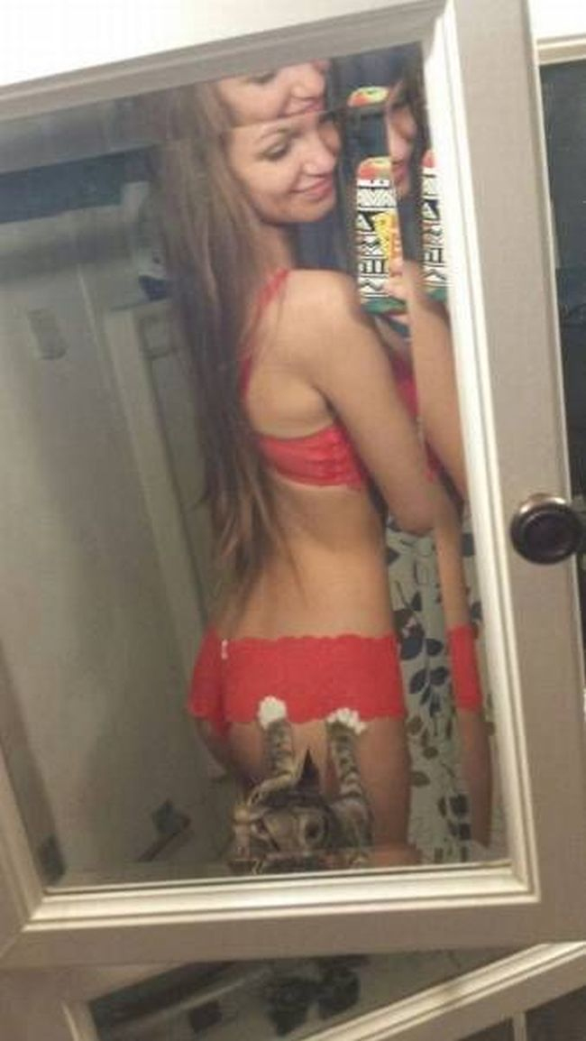 cat tries to save this girl's dignity, butt selfie