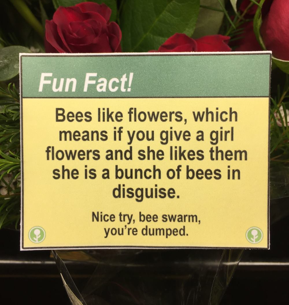 bees like flowers, which means if you give a girl flowers and she likes them she is a bunch of bees in disguise
