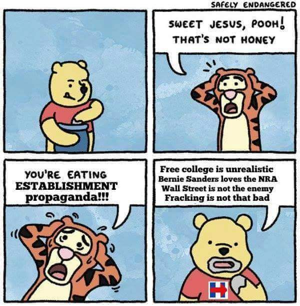 sweet jesus pooh that's no honey, you're eating establishment propaganda, free college is unrealistic, bernie sanders loves the nra, wall street is not the enemy, fracking is not that bad