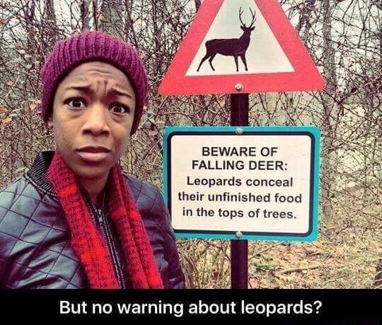 beware of falling deer, leopards conceal their unfinished food in the tops of trees, but no warning about leopards?