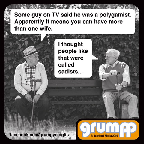 some guy on tv said he was a polygamist, apparently it means you can have more than one wife, i thought people like that were called sadists