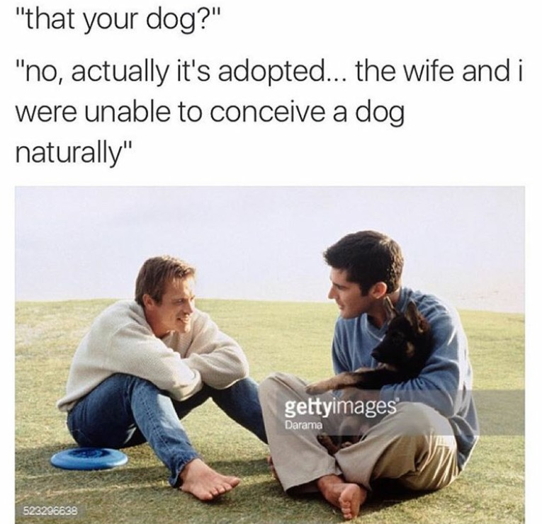 that your dog?, no actually it's adopted, the wife and i were unable to conceive a dog naturally