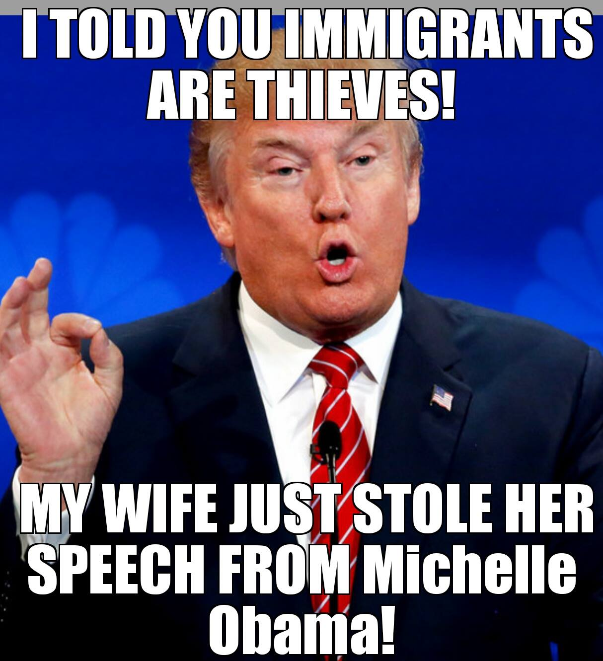 i told you immigrants are thieves, my wife just stoled her speech from michelle obama