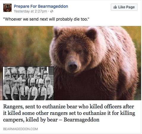 rangers, sent to euthanize bear who killed officers after it killed some other rangers set to euthanize it for killing campers, killed by bear, bearmedgeddon, whoever we send next will probably die too