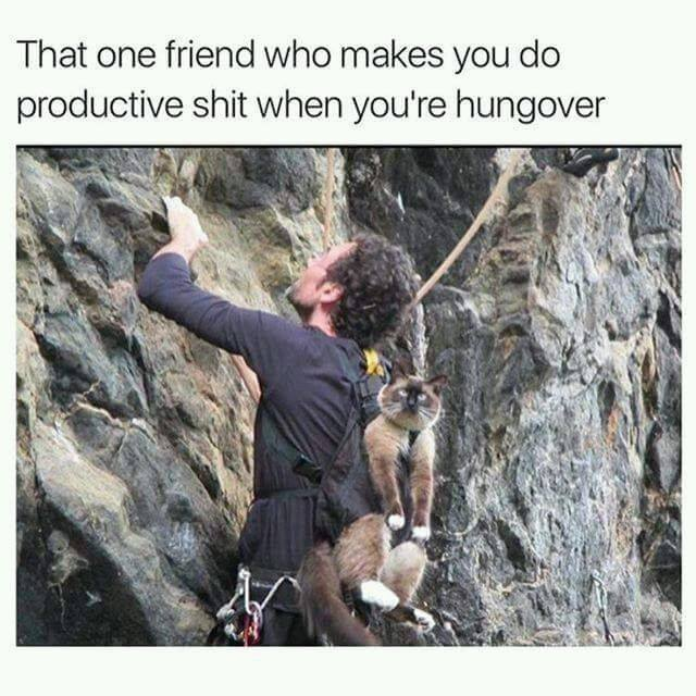 that one friend who makes you do productive shit when you're hungover
