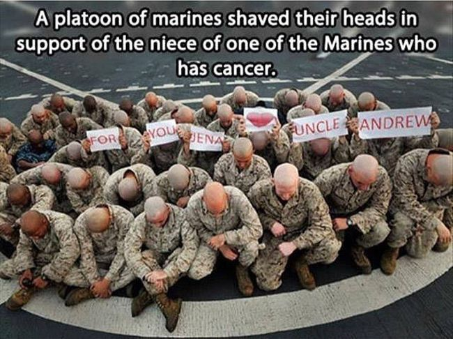 a platoon of marines shaved their heads in support of the niece of one of the marines who has cancer