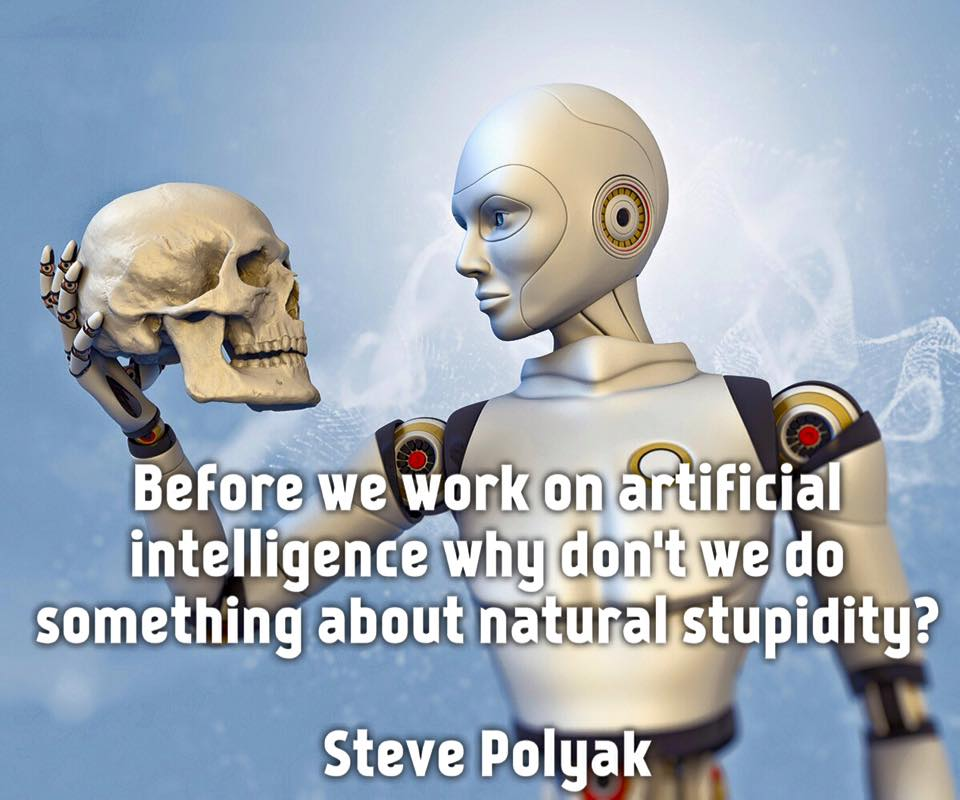 because we work on artificial intelligence, why don't we do something about natural stupidity