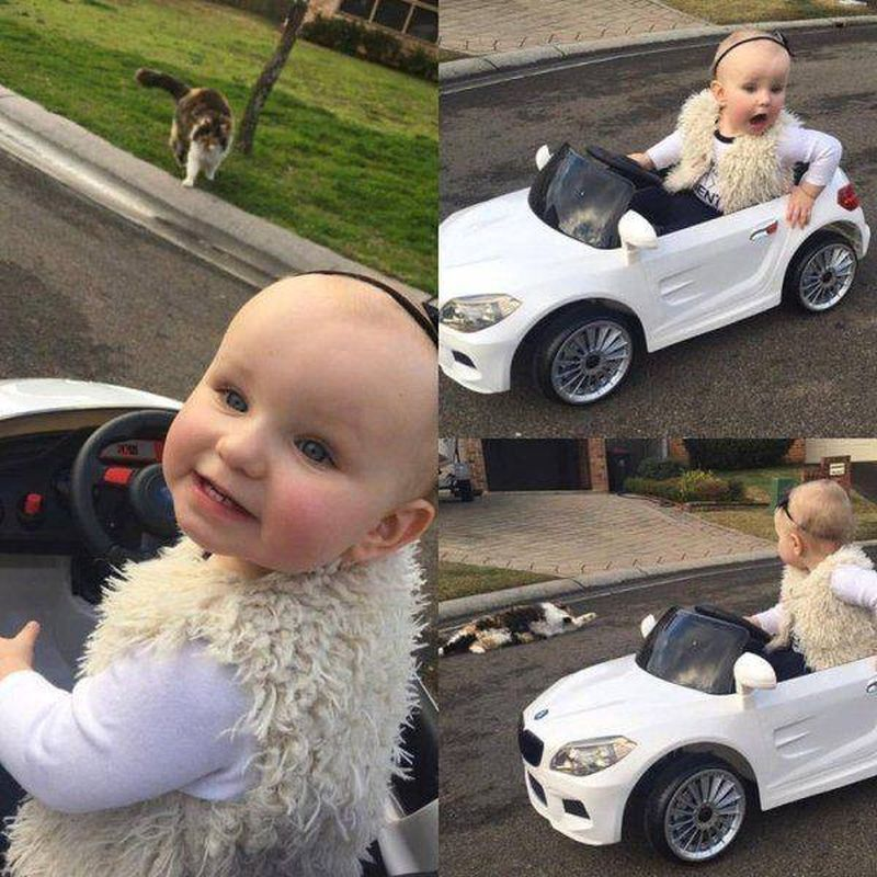 female drivers, baby girl in car sees cat