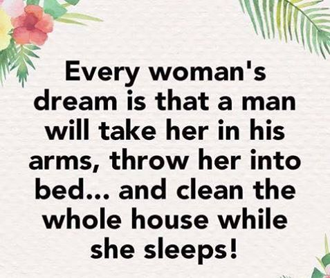 every woman's dream is that a man will take her in his arms, throw her into bed, and clean the house while she sleeps