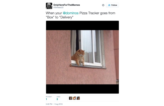 when your @dominos pizza tracker goes from box to delivery, fat cat hanging out of window