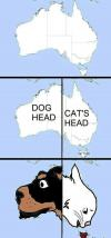 australia is just a dog and a cat's head