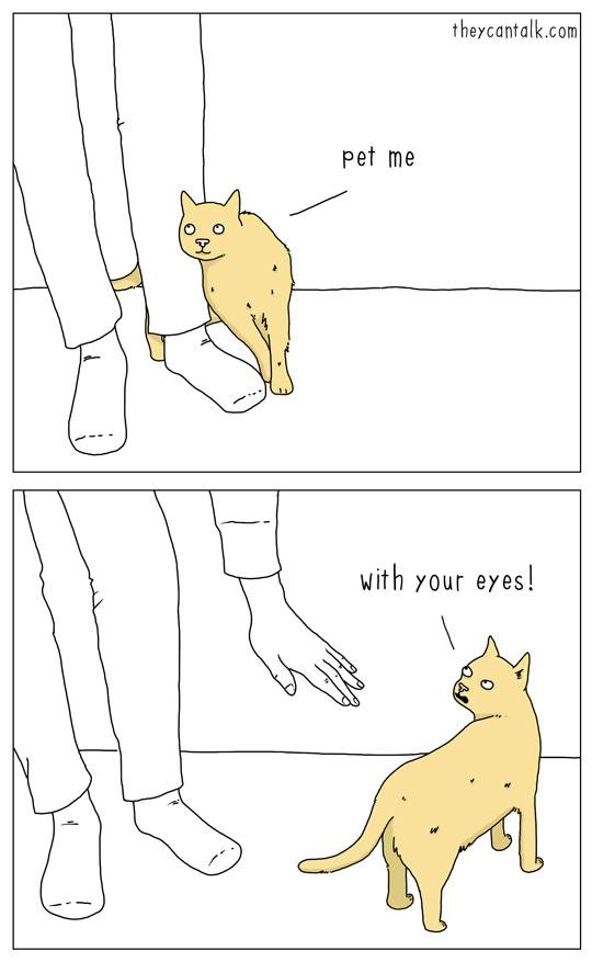 pet me with your eyes, scumbag cat, comic