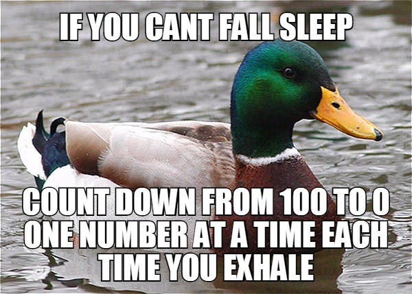 if you can't fall asleep, count down from 100 to 0 one number at a time each time you exhale, actual advice mallard, meme