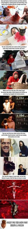 a man recreates movie scenes with his cat, lol