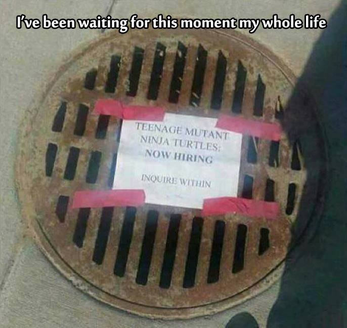 teenage mutant ninja turtles, now hiring, inquire within, sewer grate