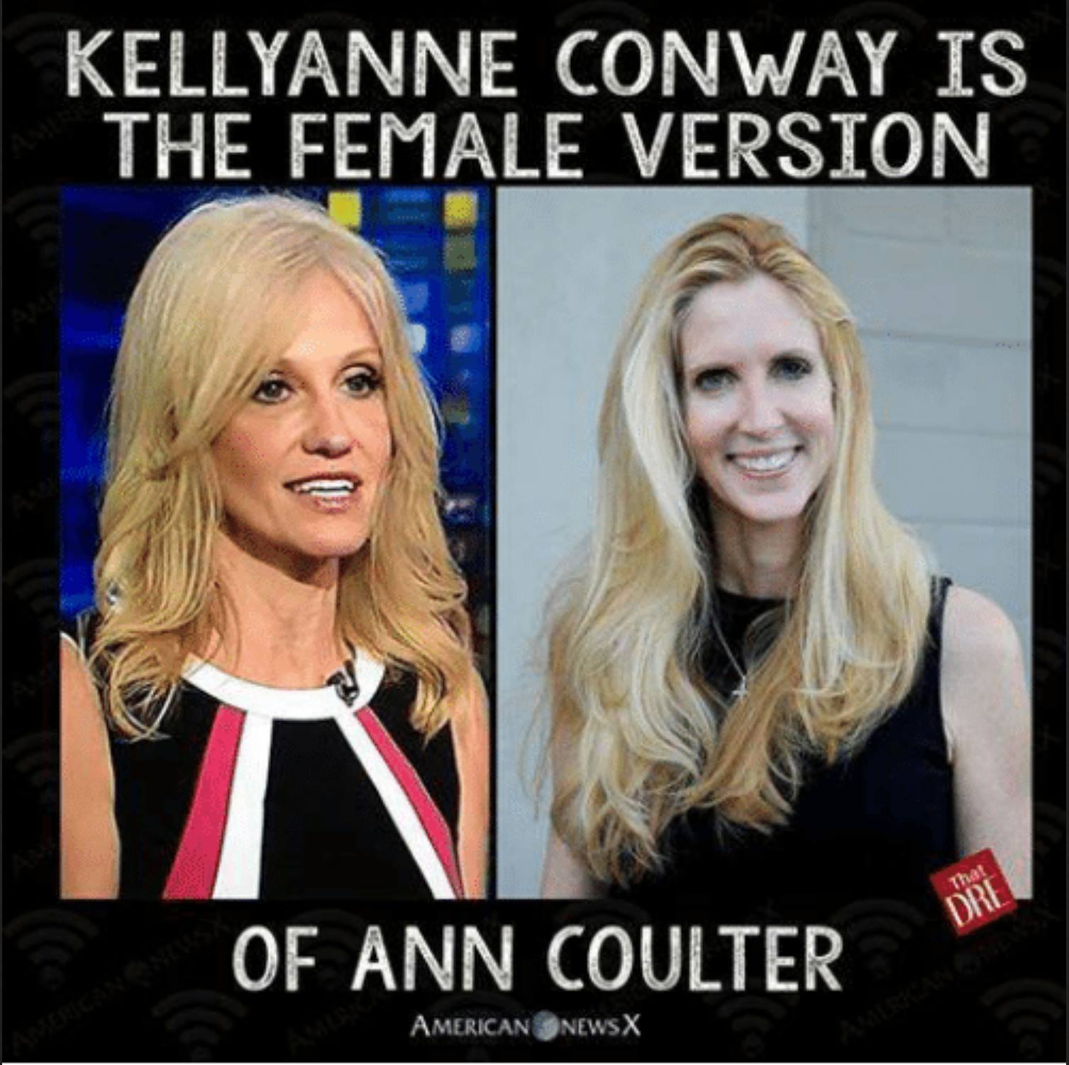 kellyanne conway is the female version of ann coulter