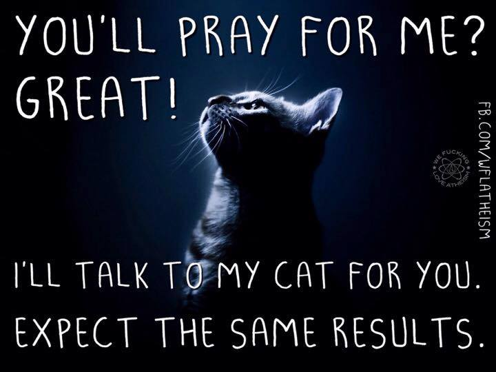 you'll pray for me?, great!, i'll talk to my cat for you, expect the same results