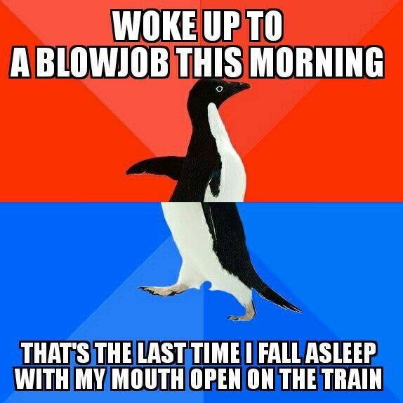 woke up to a blowjob this morning, that's the last time i fall asleep with my mouth open on the train, socially awkward penguin, meme