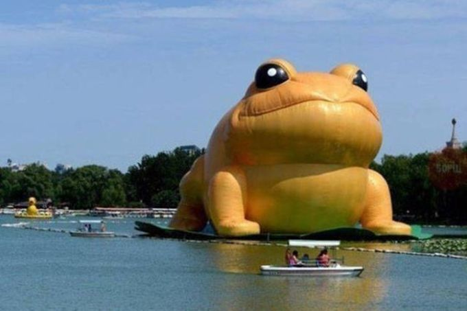 giant inflatable toad on the water, wtf