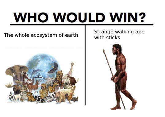 who would win, the whole ecosystem of earth, strange walking ape with sticks