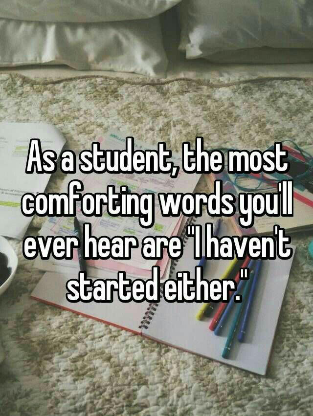 as a student the most comforting words you'll ever hear are, i haven't started either