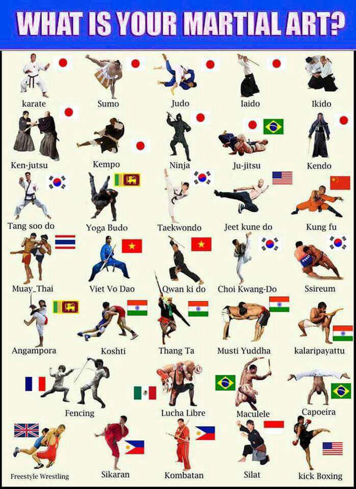 what is your martial art?