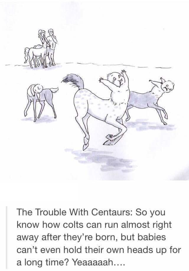 the trouble with centaurs, so you know how colts can run almost right away after they're born, but babies can't even hold their own heads up for a long time?, yeaaahh