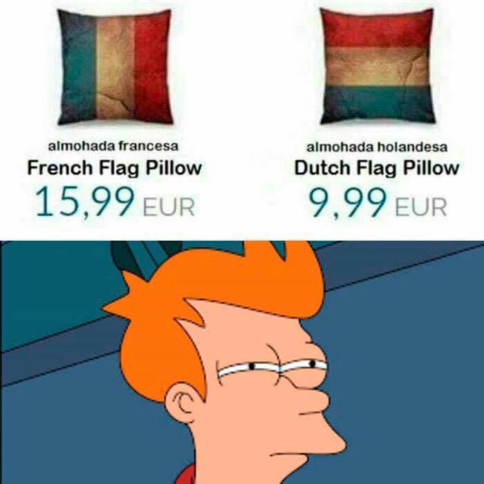 french flag pillow, dutch flag pillow, skeptical fry, meme