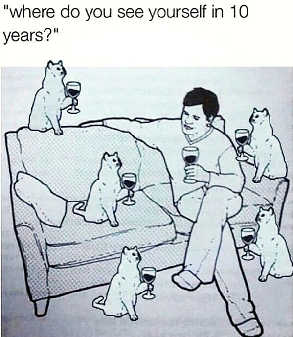 where do you see yourself in 10 years, wine with cats