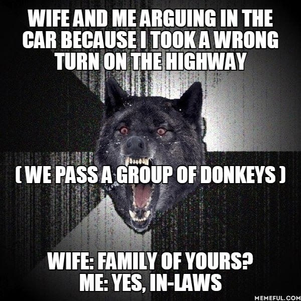 wife and me arguing in the car because i took a wrong turn, we pass a group of donkeys, family of yours?, yes, in laws, meme