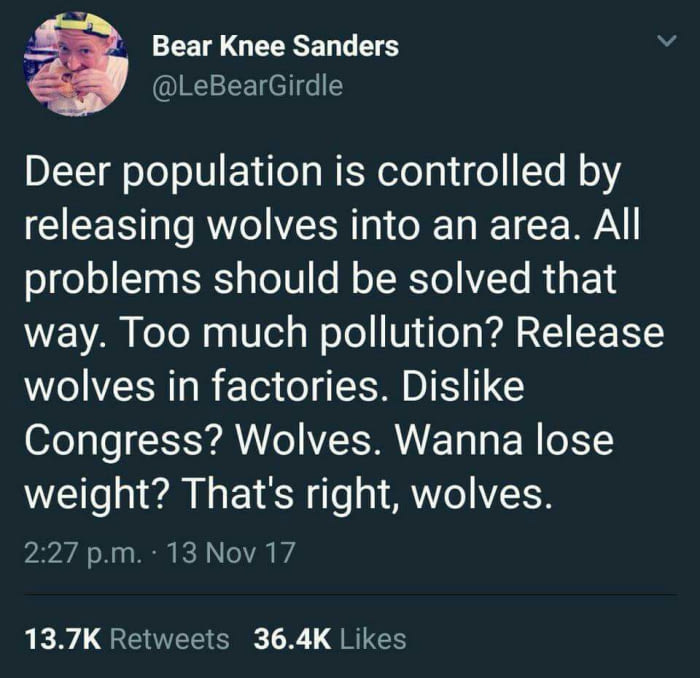release the wolves to solve all problems
