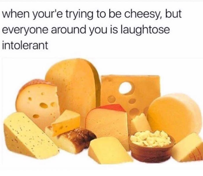 when you're trying to be cheesy but everyone around you is laughtose intolerant
