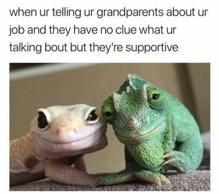 when you're telling your grandparents about your job and they have no clue what you're talking about but they're supportive