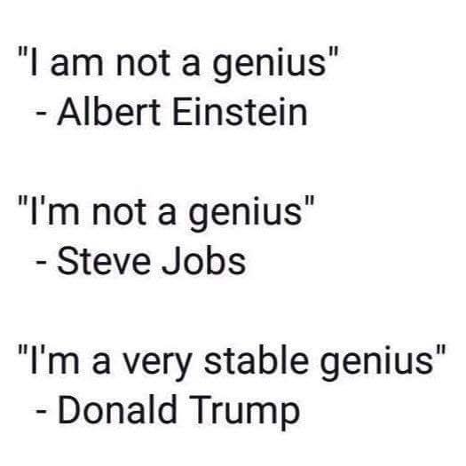 i am not a genius, albert einstein, i'm not a genius, steve jobs, i'm a very stable genius, donald trump