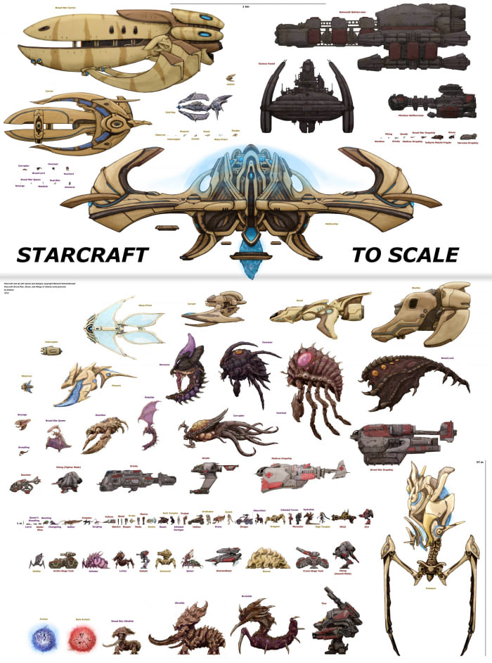 starcraft to scale, blizzard