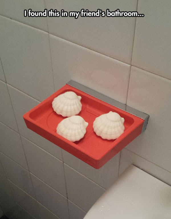 i found this in my friend's bathroom, three sea shells