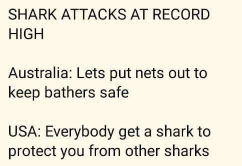 shark attacks at record high, australia, let's put nets out to keep bathers safe, usa, everybody gets a shark to protect you from other sharks