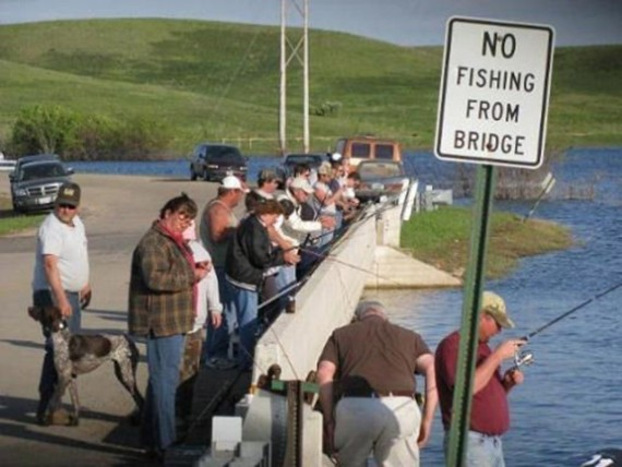 no fishing from bridge, everyone fishing from bridge, rebels