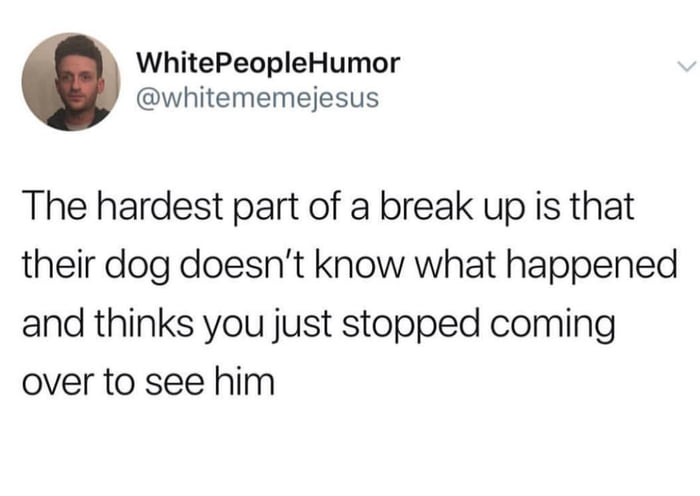 the hardest part of a break up is that their dog doesn't know what happened and thinks you just stopped coming to see him