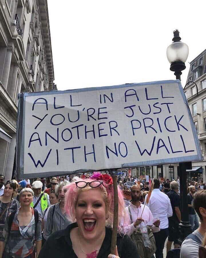 all in all you're just another prick with no wall, protest sign, trump
