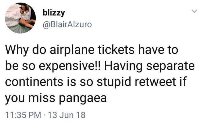 why do airplane tickets have to be so expensive, having separate continents is so stupid between if you miss pangea